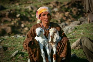 Gujar Woma with Goats